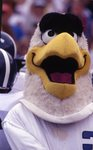 Georgia Southern University Football, 1996, Slide #5 by Frank Fortune