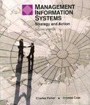 Management Information Systems: Strategy and Action, 2nd ed.