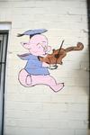 Pig playing violin