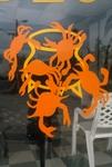 Crabs on window
