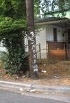 Telephone pole graffiti