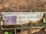 Bobby Lee Bradshaw by Lakia Hillard