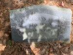 Carolyn A. Brogenton by Lakia Hillard